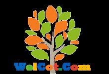 使用Nikto探测或测试一个网站所用到的技术