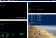 Win10使用进阶   开启Linux Bash命令行(这是个完整的 Linux 系统)